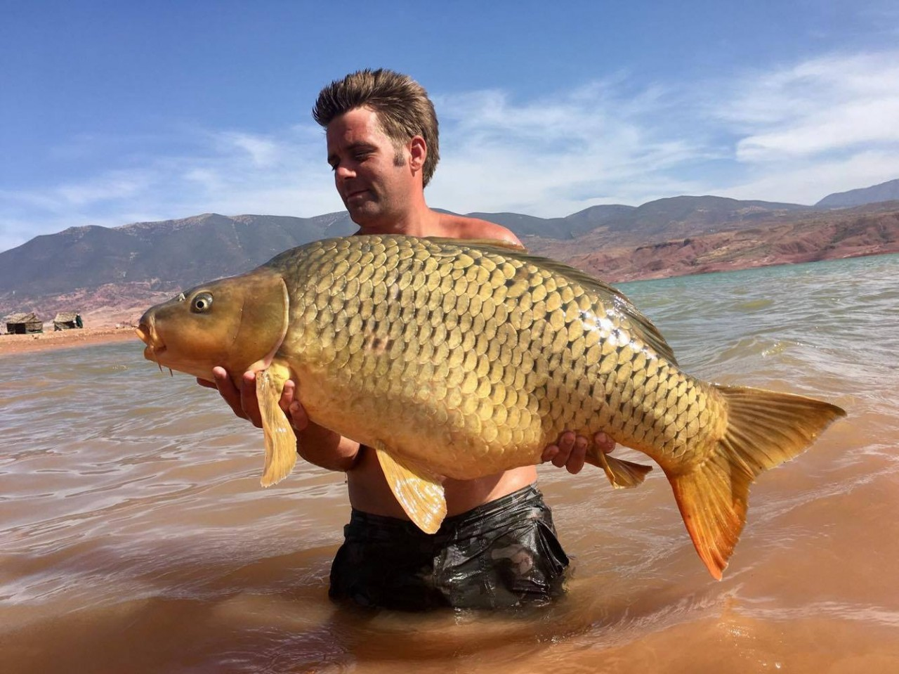Catch report September 2017 (Angler Luke Taylor)