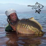 Morocco Carp